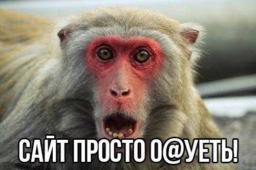 monkey_wow